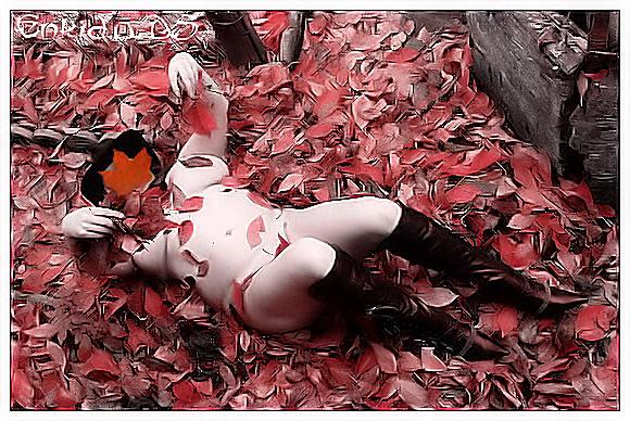 Feuilles d'automne dans Compo enk18coucheerose