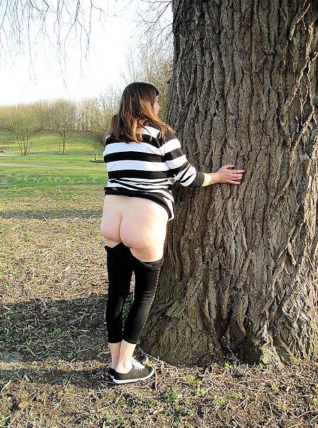 Comme cul et arbre dans Parc enk52_parc19
