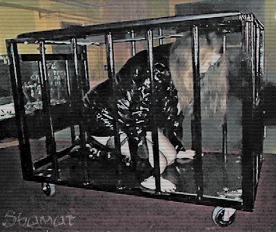 Salon de l'érotisme de Charleroi – En cage dans Bustier noir enk63_chroi16