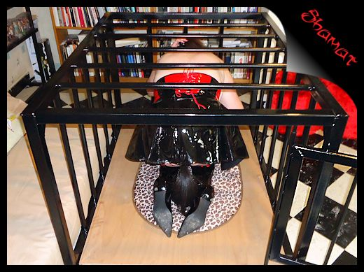 es130516ez14 dans Cage